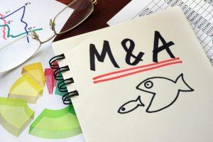 中小M&A税制の創設《その1》~令和3年度税制改正大綱